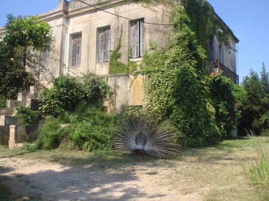 mercouri main house